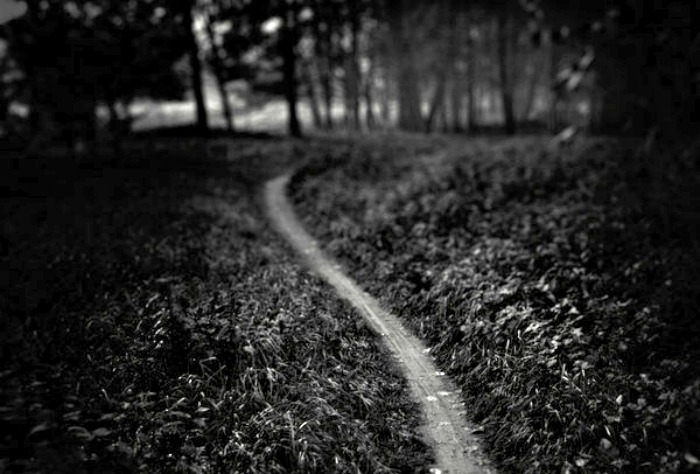 THE PATH (by WiciaQ)